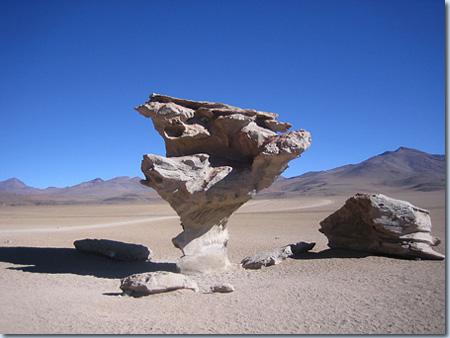 Árbol de Piedra