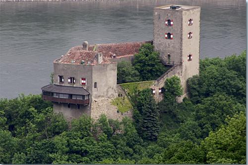 Burg Greifenstein (Niederösterreich)