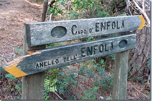 Capo d'Enfola