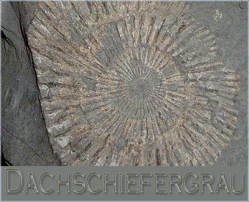 Dachschiefergrau