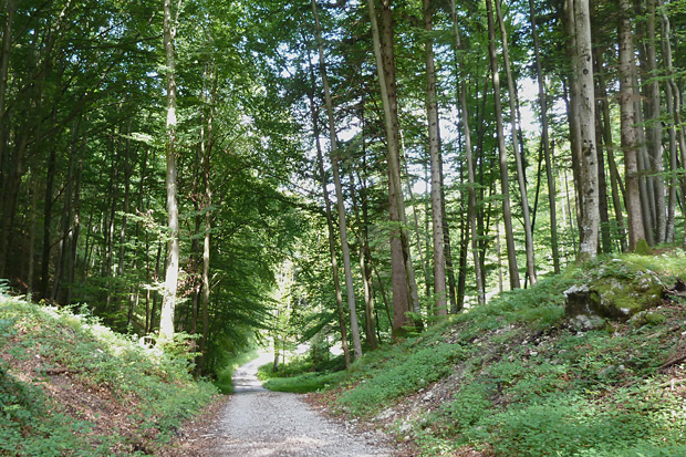 Grenzstein zwischen Ohlstadt und Eschenlohe