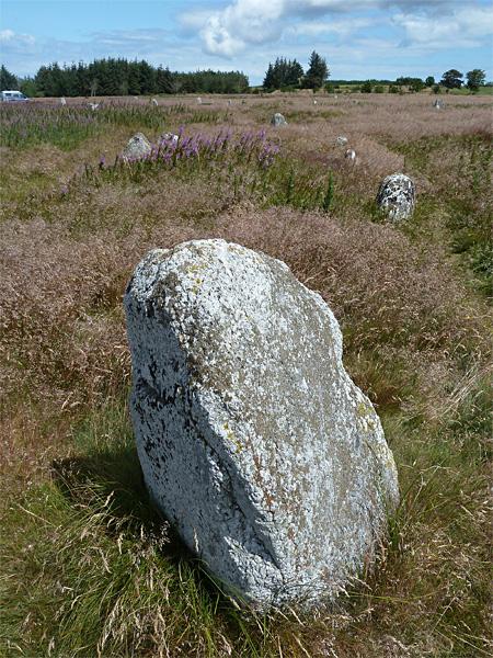 Wikingerfriedhof Højstrup