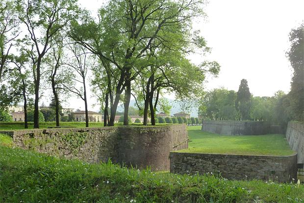 Stadtmauer von Lucca