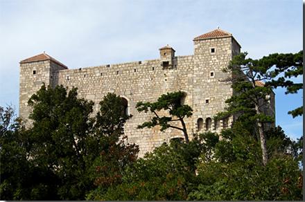 Burg Nehaj