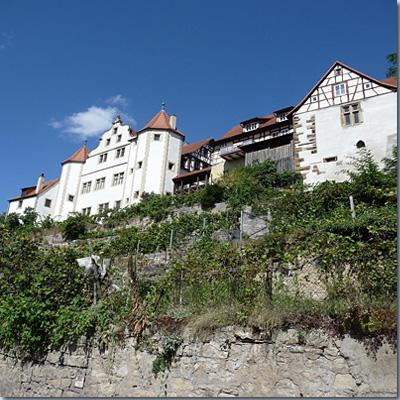 Schloss Gochsheim
