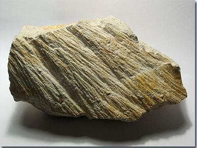 Strahlenkalk aus dem Steinheimer Becken