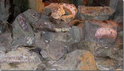 Steinkaulenbergwerk