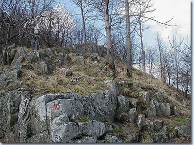 Steinkopf (Rhön)