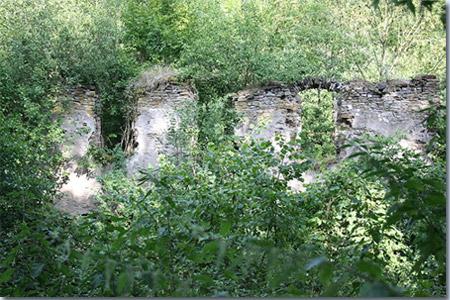 Klosterruine Tönisstein
