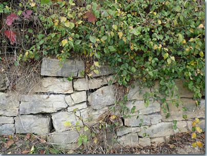Trockenmauer im Kraichgau
