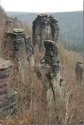 Felsennadel