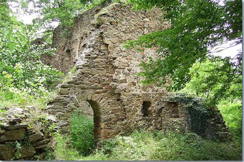 Burg Vikštejn